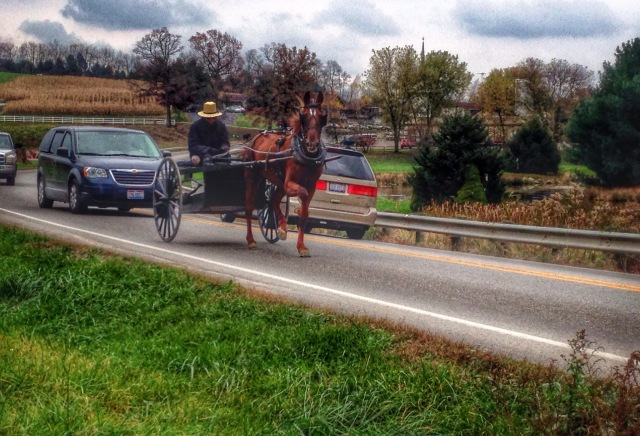 Horse and buggy. Amish Country. Charm, Ohio